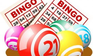 Play Bingo and Win Money