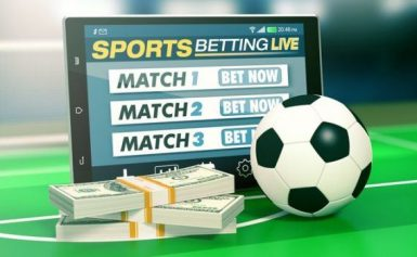 Exactly what is a Sports Betting System?